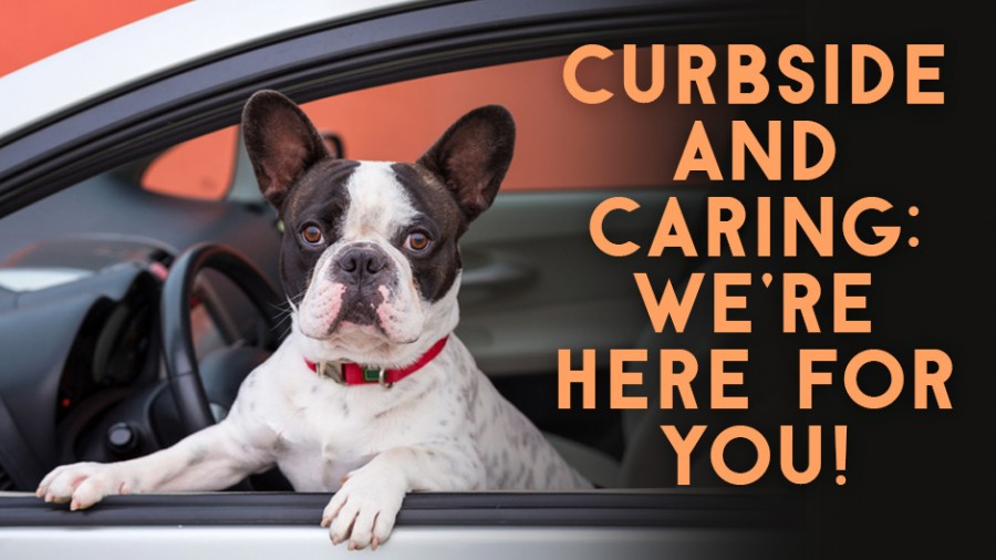 Curbside & Caring: We're Here for You!