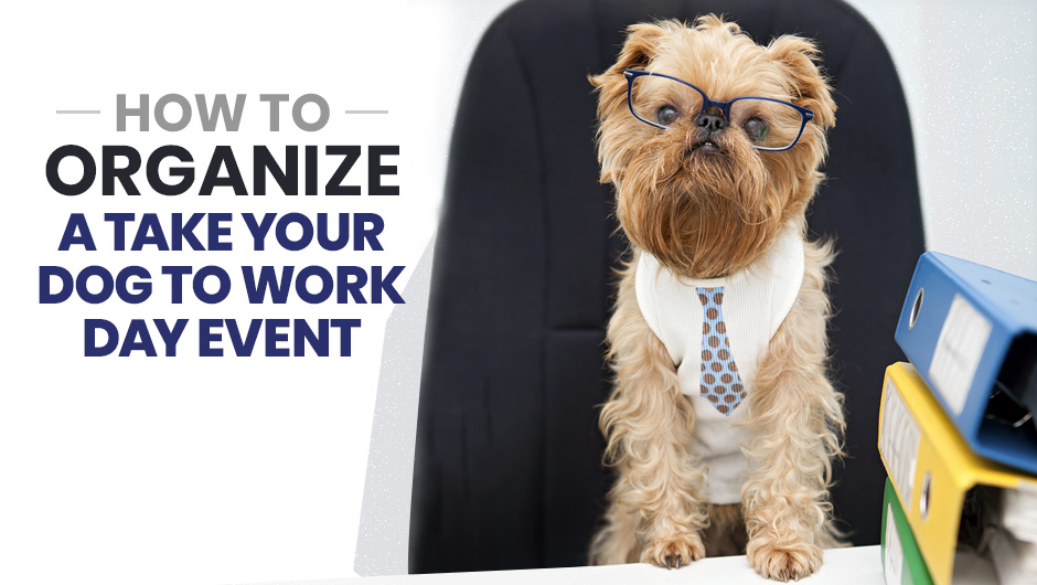 How to Organize a Take Your Dog to Work Day Event