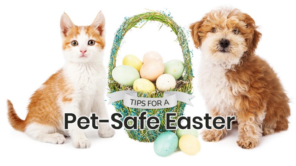 Tips for a Pet-Safe Easter