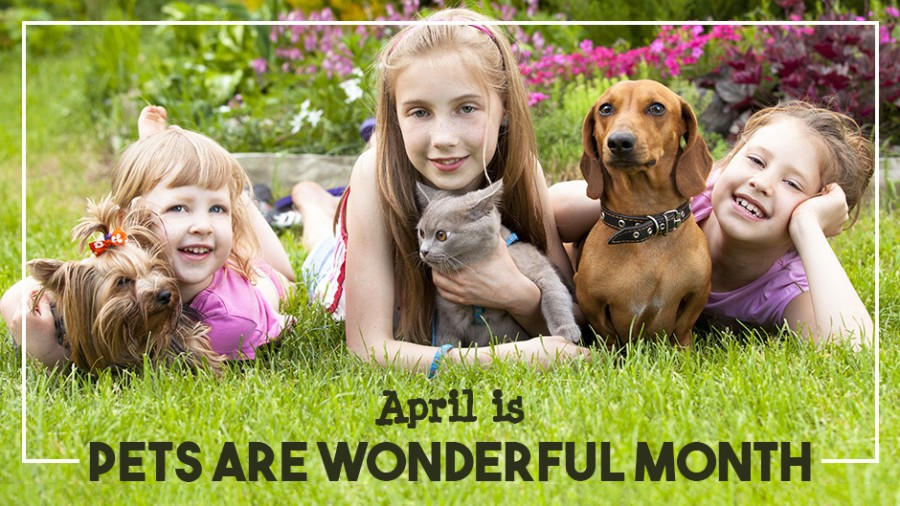April is Pets Are Wonderful Month