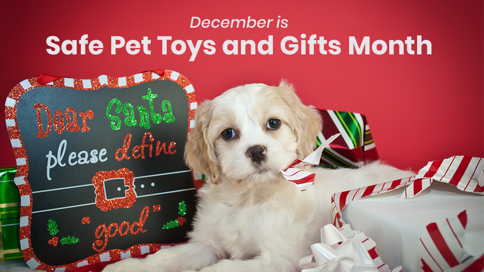 December is Safe Pet Toys and Gifts Month