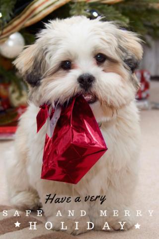 We Wish you a Safe Holiday Season!