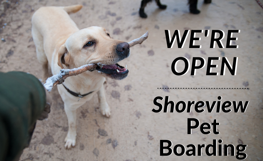 Shoreview Pet Boarding: We're Open