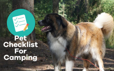 Pet Checklist For Camping